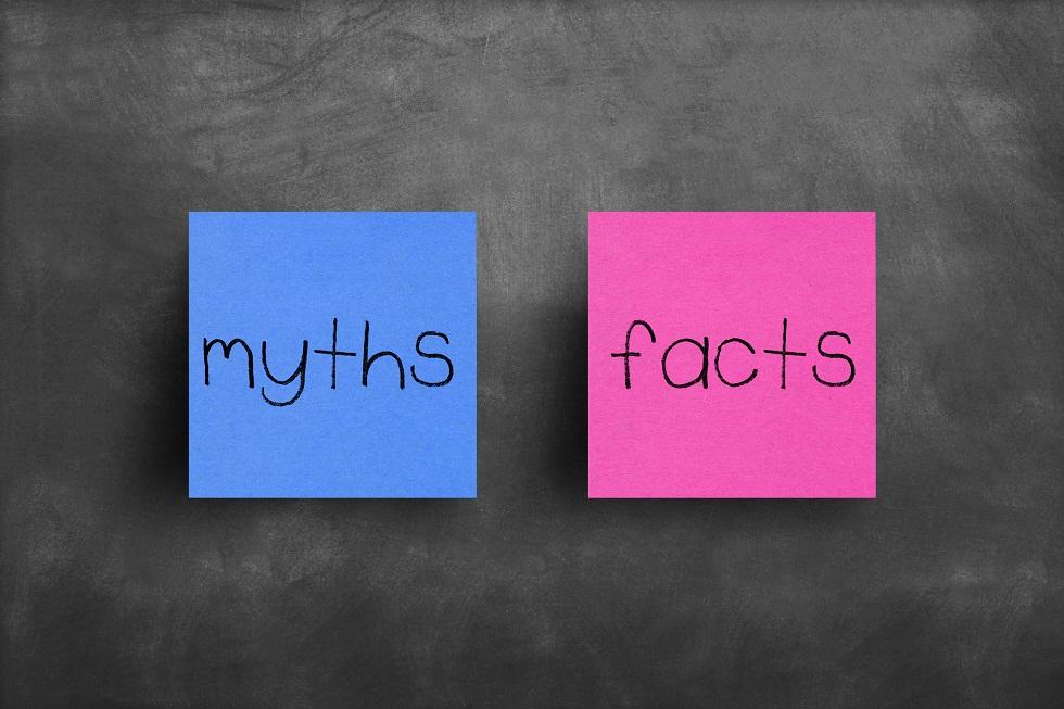 Jak wygląda rok szkolny w USA? Fakty i mity